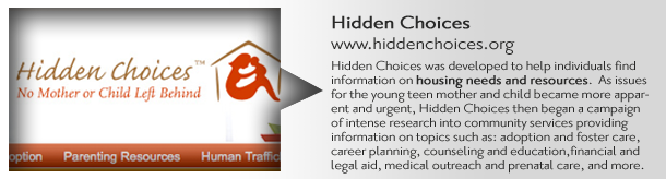 Hidden Choices database of Maternity Homes and financial resources