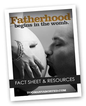 Fact Sheet - TooManyAborted.com